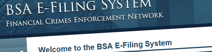 Snippet of BSA E Filing Website